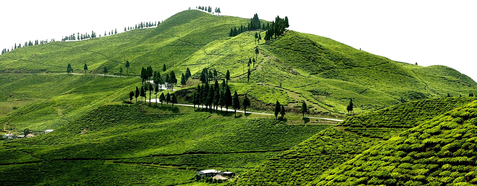 eastern-region-trekking